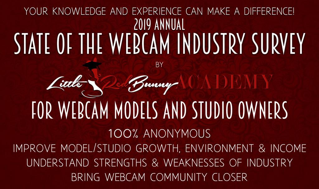 Cam Survey Header Site Poster (w Model Studio)