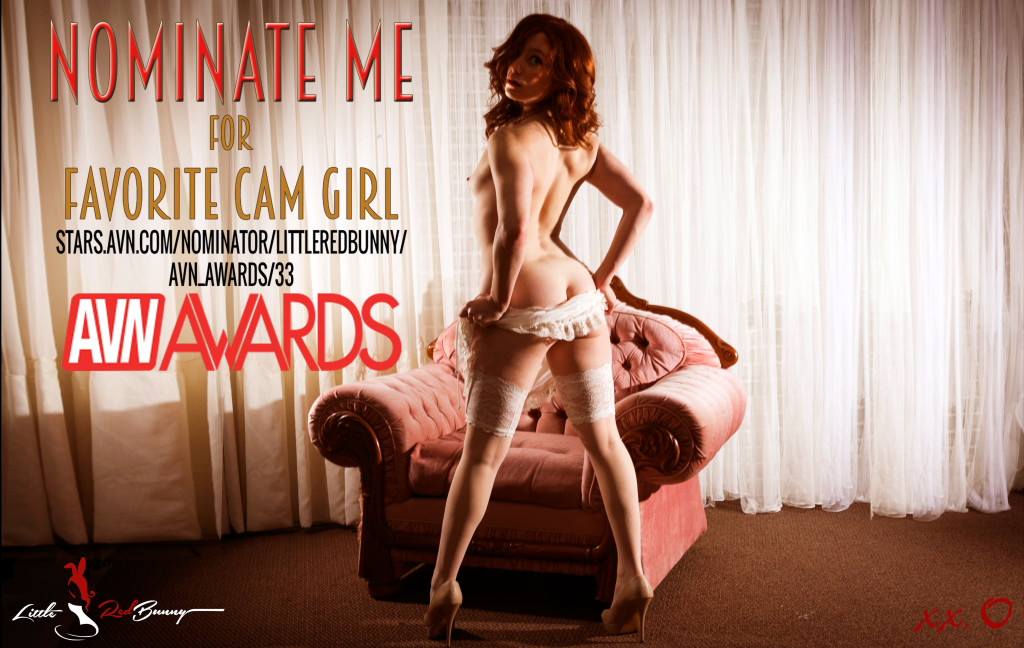 AVN Nominate Me 2020 Poster 1A (Uncensored)